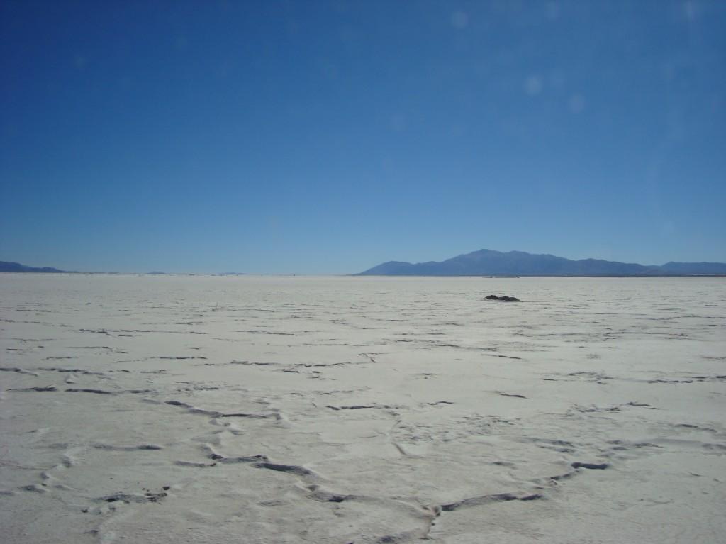 Salar du Desert de l'Atacama